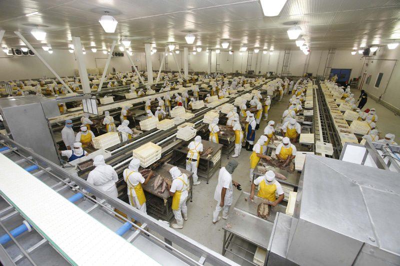 ISO 22000: Falhas mais frequentes na implementação do Sistema de Gestão da Segurança de Alimentos (Parte II)