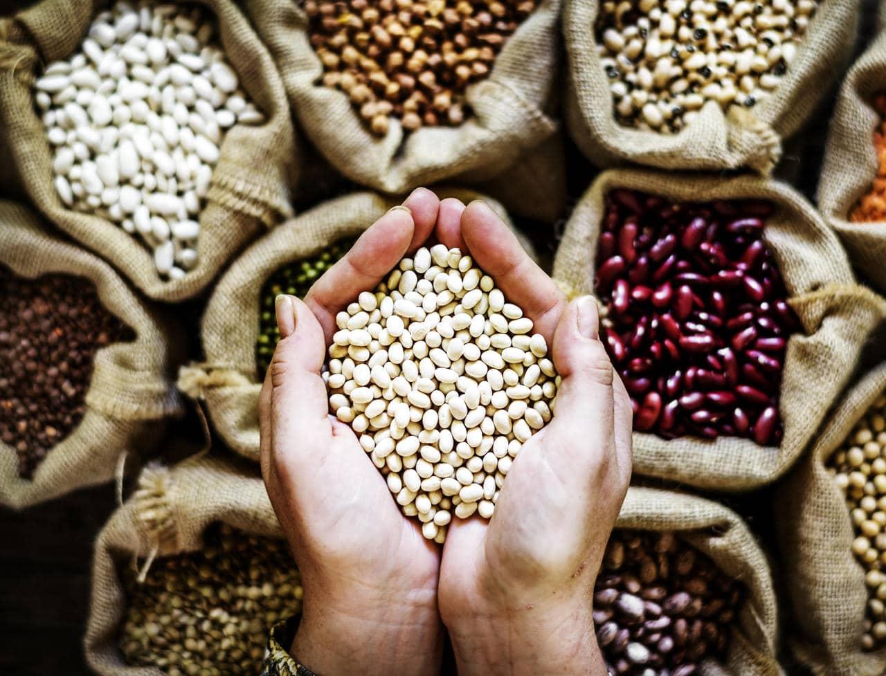 Você sabe avaliar se está perdendo dinheiro com sua produção de alimentos?