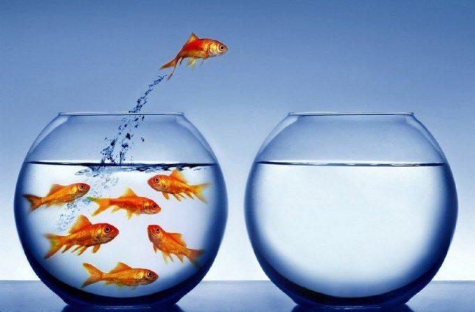 """Gestão da Mudança: Transpondo o paradigma """"sempre fiz assim, por que mudar?"""""""