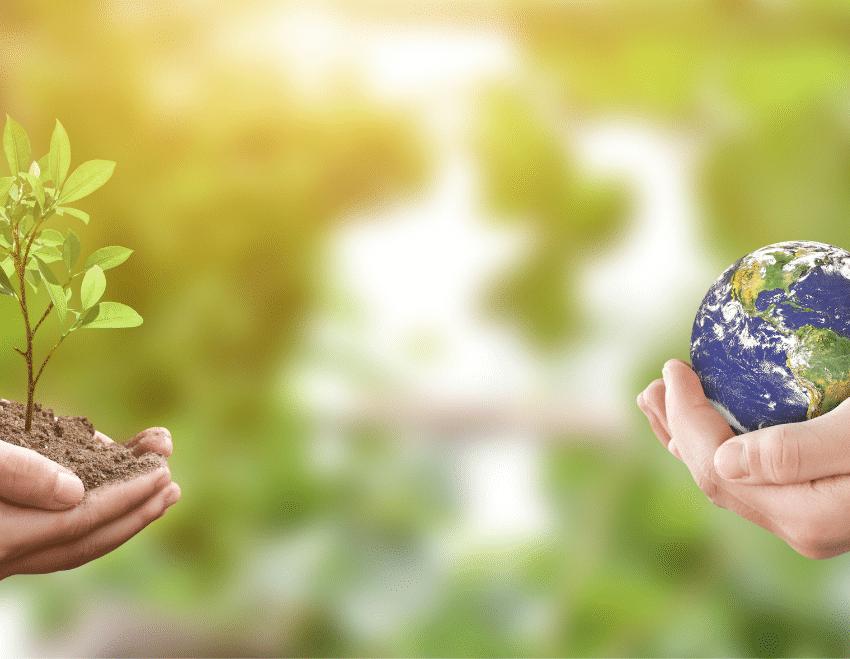 O que é a ISO 14001