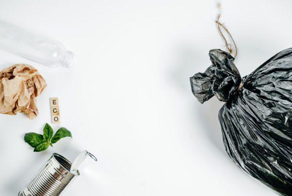 ISO 14001 e gestão ambiental